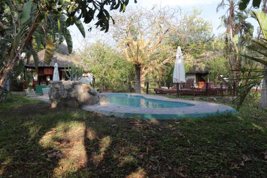 Tremisana Game Lodge: Pool