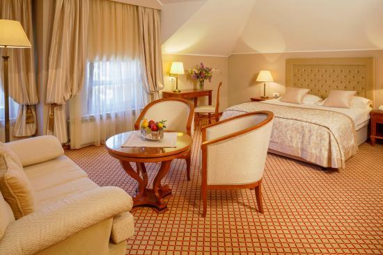 Hotel Zlatnik: Deluxe room
