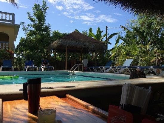 Seastar Inn: Pool from inside bar