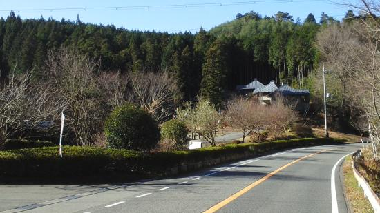 Keikoku no Mori Park