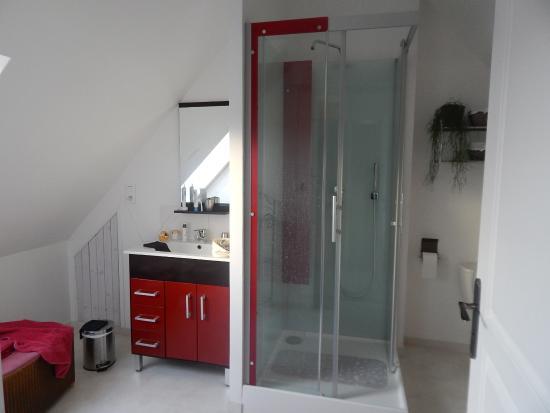 Saint-Germain-Sur-Ay, Γαλλία: Salle de bain