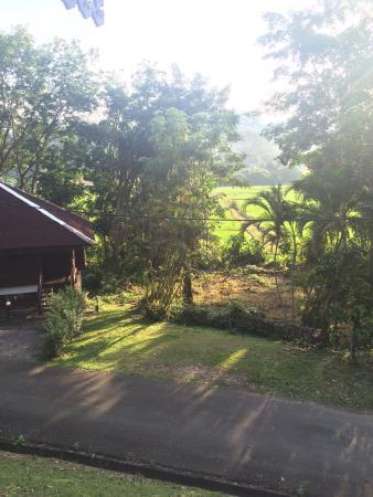 Kampung Tok Senik Resort Langkawi : photo1.jpg