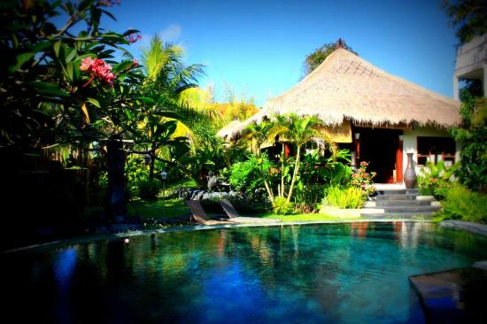 Lullaby Bungalows: Pool