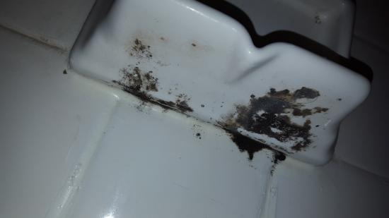 Motel 6 Libertyville: moldy soap holder