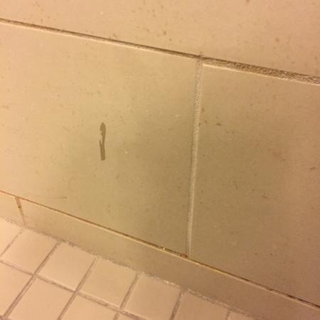 The Westin Huntsville: Shower... yuck