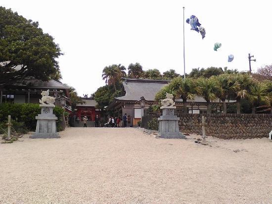 青島 - Picture of Aoshima Island, Miyazaki - TripAdvisor