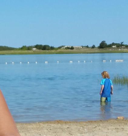 Γιάρμουθ Πορτ, Μασαχουσέτη: Roped off safe swimming area at Gray's Beach