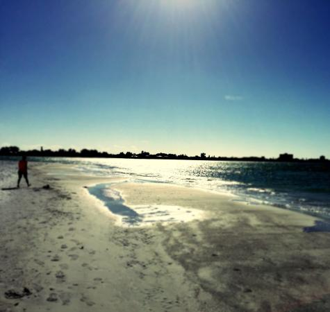 Sarasota Sands: photo1.jpg