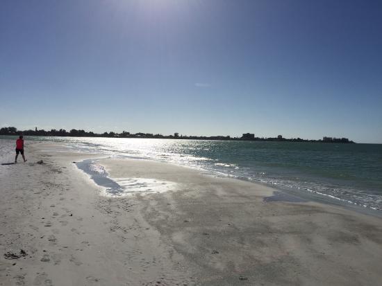 Sarasota Sands: photo2.jpg