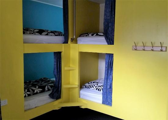 Flying Kiwi Backpackers Hostel: 4 Bed dorm