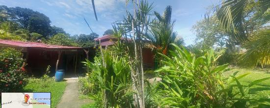 Hostel and Cabinas Secret Garden: garden