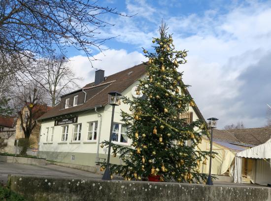 Florsheim, Alemania: Flörsheimer Bootshaus mit geschmücktem Weihnachtsbaum
