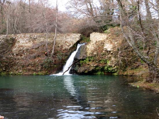 Il laghetto e la cascata foto di parco della mola for Cascata per laghetto