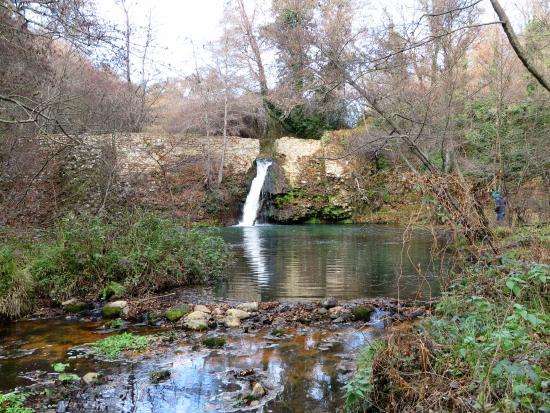 Cascata laghetto e fiume fotograf a de parco della mola for Cascata per laghetto