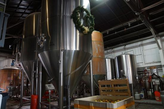 Hangar 24 Craft Brewery: Brewing vats in the bar area