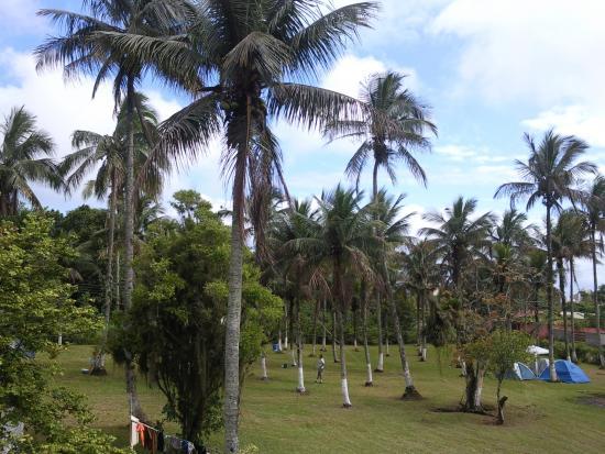 Camping Martim de Sa