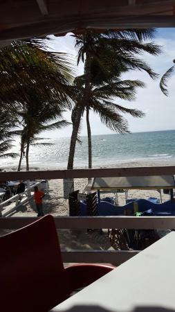 Hotel Surf Paradise: IMG-20151215-WA0005_large.jpg