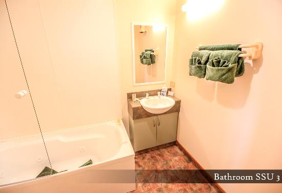 Timaru, Новая Зеландия: Studio Unit - Bathroom