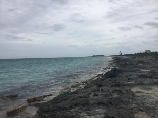 Three Marys Cays: photo5.jpg