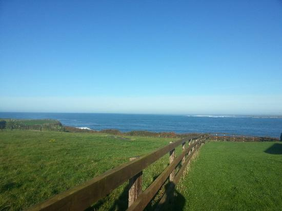 Quilty, Irland: 20151101_101536_large.jpg