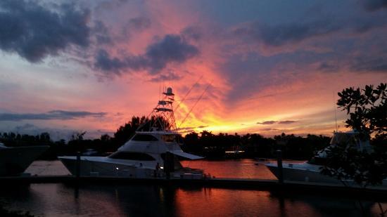 Jupiter, FL: harbour view at sunset at harbourside