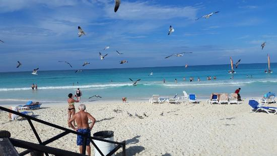 Memories Paraiso Beach Resort Azul