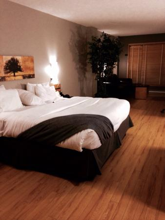 Hotel Dauphin Montreal Downtown: Chambre (suite junior)