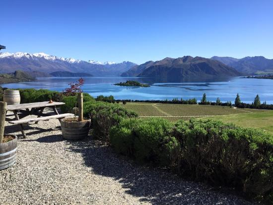 Rippon Vineyard: View from Rippon's terrace