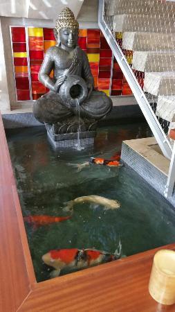 A slice of heaven with a koi pond...