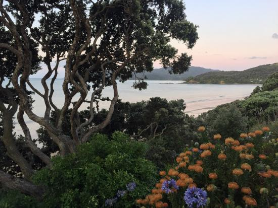 Coopers Beach, Selandia Baru: photo2.jpg