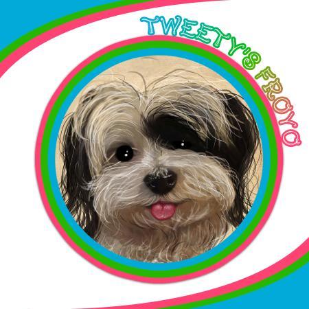 Esteli Department, نيكاراجوا: Tweety's Froyo