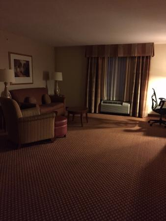 Hilton Garden Inn Schaumburg: View as you enter room