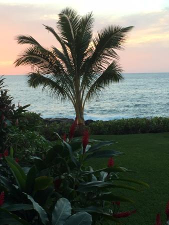 Kona Makai: View