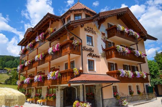 Hotel Stella Alpina: Posizione molto tranquilla