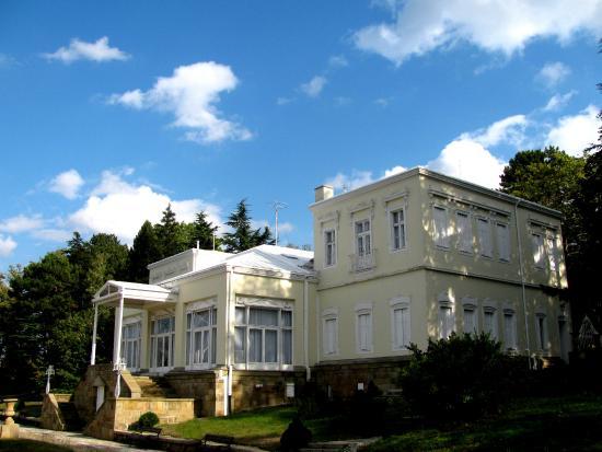 Golden Hill Villa
