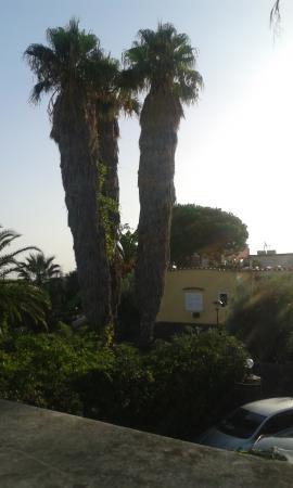 Hotel Villa Campo: VUE