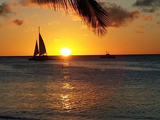 Marriott's Aruba Ocean Club張圖片