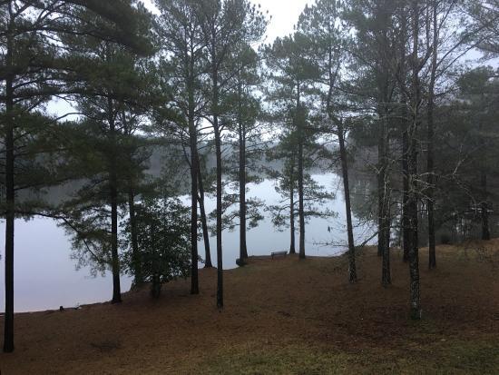 Wildersville, TN: photo1.jpg