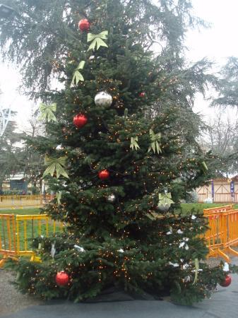 Albero Di Natale Milan.L Albero Di Natale Non Poteva Mancare Picture Of Giardini Pubblici