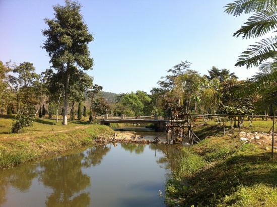 Canary Natural Resort: 2