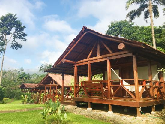 La Anita Rainforest Ranch : Front of the cabin