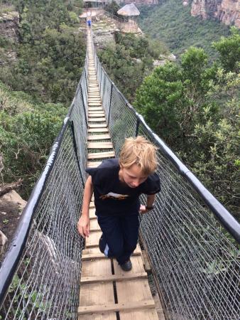 Lake Eland Game Reserve: suspension bridge