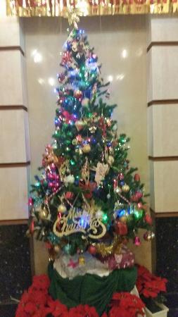 Khaosan Palace Hotel: 20151215_204221_large.jpg