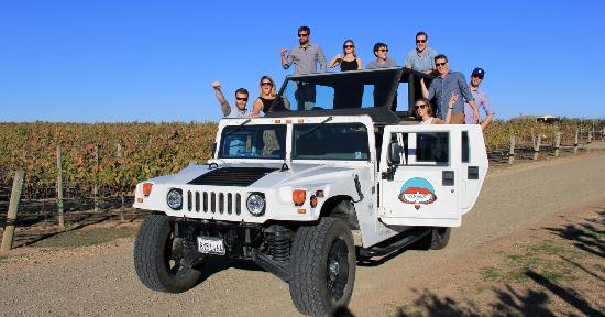 Wild Valley Tours