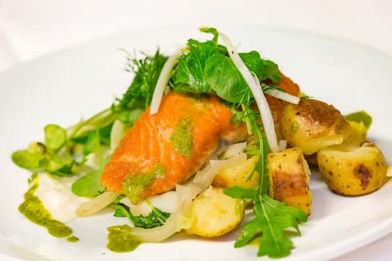 Cafe Sol Bistro: Salmon, organic fennel and leeks, horseradish cream