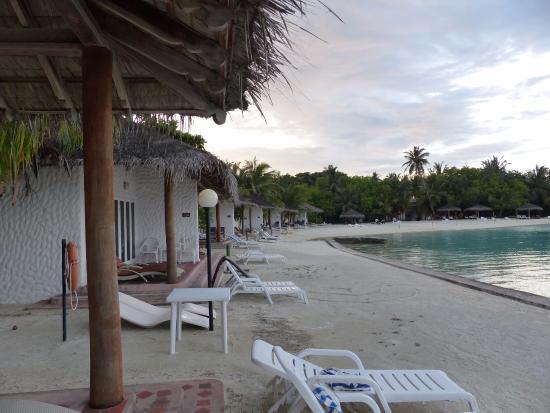 beach bungalows picture of cinnamon dhonveli maldives. Black Bedroom Furniture Sets. Home Design Ideas