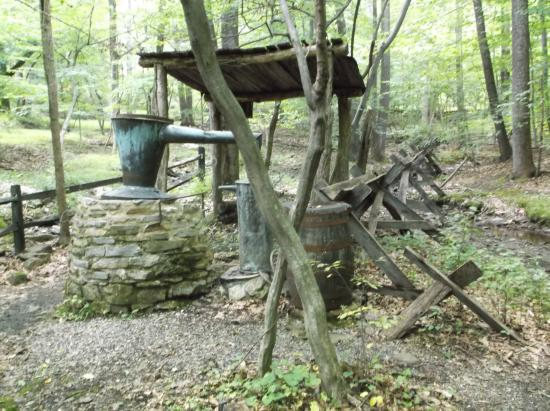 Catoctin Mountain Park: Whiskey Still