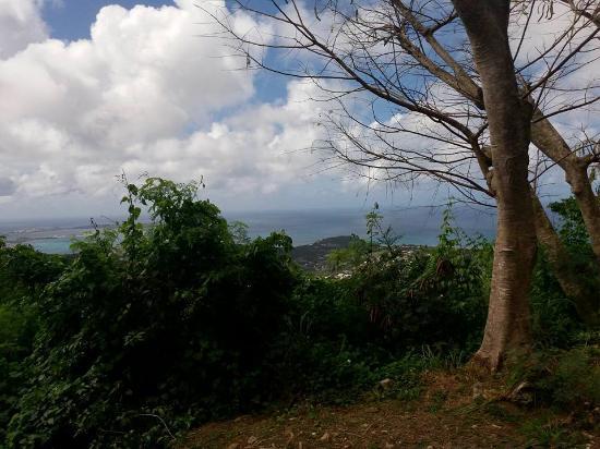 Oyster Pond, Saint-Martin / Sint Maarten: Great View