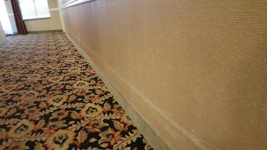 Homewood Suites by Hilton Indianapolis-Keystone Crossing: 20151222_163949_large.jpg