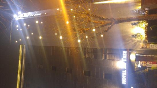 Hotel La Tree